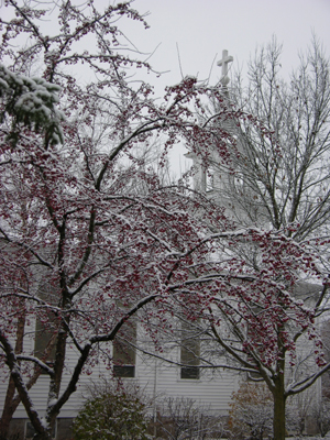 Christ Lutheran Church in Snow, Tree with Red Berries